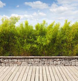 Gartenterrasse mit Bambus